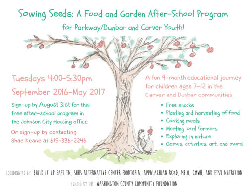 Sowing Seeds Flyer update